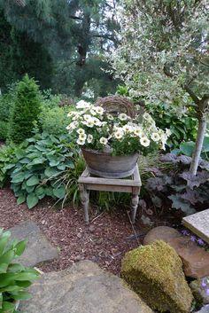Stuhl mit bepflanzter Zinkwanne