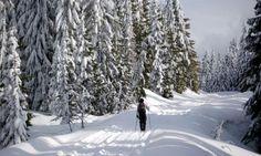 Leavenworth Washington Cross Country Skiing
