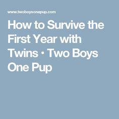 How to Survive the First Year with Twins • Two Boys One Pup
