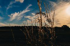 ❕ field sunset sky  - new photo at Avopix.com    🆗 https://avopix.com/photo/23611-field-sunset-sky    #field #landscape #sunset #sky #clouds #avopix #free #photos #public #domain