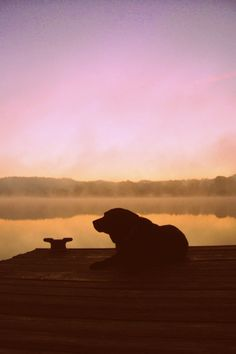 Labrador Sunrise | Flickr - Photo Sharing!