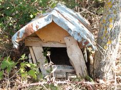 Old dog shed nearby Paklenica/Gracac, Croatia. Photographed by Marleen van de Kraats, no photoshop or paint etc.