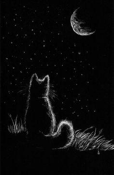 Und ich kann nur über deinen Mond nachdenken … es ist schade, dass es am Himmel ist …, And I can only think about your moon … it is a pity that it is in the sky …, Tier Wallpaper, Animal Wallpaper, Wallpaper Art, Grey Cat Wallpaper, Galaxy Wallpaper, Screen Wallpaper, Wallpaper Backgrounds, Black Paper Drawing, Black Cat Drawing