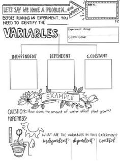 Types of Variables Sketchnotes by Creativity Meets Cognition 7th Grade Science, Science Curriculum, Science Resources, Middle School Science, Science Classroom, Science Lessons, Science Education, Science Process Skills, Primary Science