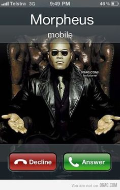 The Matrix is calling. HAHA.  Green pill or the red one.  I'm laughing way too hard at this.