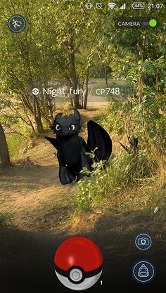 Toothless ♥ : Photo Big Dragon, How Train Your Dragon, How To Train Your, Train Dragon, Hiccup And Toothless, Httyd 3, Dreamworks Dragons, Disney And Dreamworks, I Only Want You