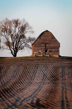 _DSC5803 Old Barn and Corduroy Fields -- how many 11-11-11's can you count? by Sally Van Natta, via Flickr #provestra