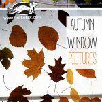 AUTUMN WINDOW PICTURES