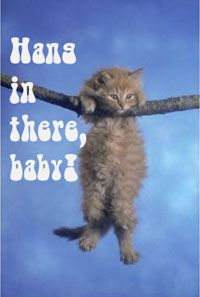 Keep Hanging In There Cat Poster