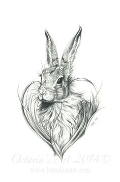 Hare Love Print  Cute Hare  Rabbits and Hares. by Lunarianart, £7.95