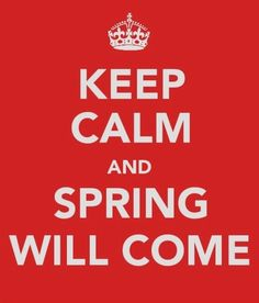 Keep calm. Spring will come..... I'm waiting... and waiting... less patiently every day....
