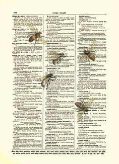 Bee Art Print on Antique Dictionary Page, Vintage Bee Illustration, Mixed Media Collage Art Print, Wall Art, Wall Decor. $10.00, via Etsy.
