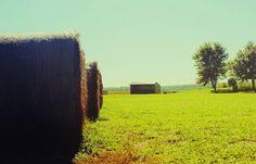 farm photography