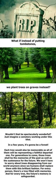 Planting trees instead of placing tombstones. Way to go out with a positive mark on the earth.