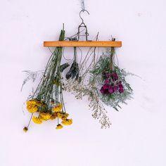 DIY sencillo para aprender a secar flores y usarlas para decorar cualquier rincón de la casa.