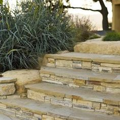 Outdoor steps with stone