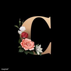 Classic and elegant floral alphabet font letter C free image by Cute Wallpapers, Wallpaper Backgrounds, Iphone Wallpaper, Floral Letters, Monogram Letters, Aesthetic Letters, Alphabet Wallpaper, Free Illustrations, Hand Lettering