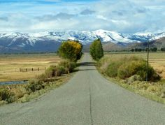 Trail Creek road. Mackay, Idaho