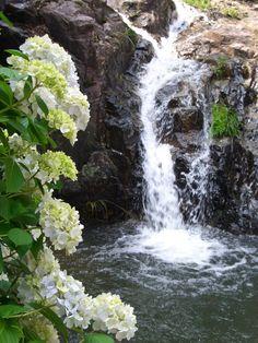 Okayama Bizen|岡山(おかやま) 備前(びぜん)|備前市大内995 大瀧山西法院|6/15(土)~6/30(日)予定 ※あじさいの開花具合によって多少前後します。  |梅雨独特のシトシトという静かな雨の中、約3万本のあじさいが咲き乱れその豊かな花が広がるさまはまるで万華鏡のような印象を受けます。当日は、あじさい寺でお茶会が開かれる他、俳句・短歌・川柳の投句首も催されます。 おみやげにあじさいせんべいもありますよ!