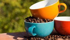 Büro und Gastronomie | Genuss+Mehr Online-Shop Gronau Shops, Mugs, Tableware, Fine Dining, Kaffee, Tents, Dinnerware, Cups, Dishes