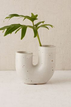 Urban Outfitters Ikebana Vase