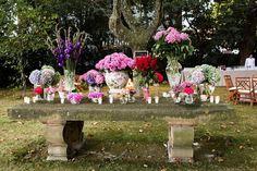 La sastrería de las flores: la primavera en tu boda.
