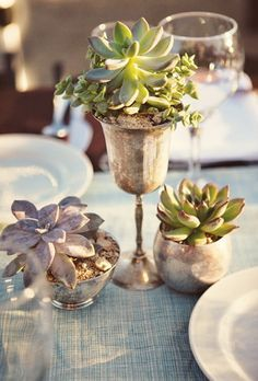Desert Sunset Wedding in Joshua Tree Succulents in a variety of antique silver vessels scattered the tabletops. Stephanie Williams PhotographySucculents in a variety of antique silver vessels scattered the tabletops. Succulent Wedding Centerpieces, Succulent Table Decor, Joshua Tree Wedding, Wedding Decorations, Table Decorations, Centerpiece Ideas, Table Centerpieces, Centrepieces, Sunset Wedding