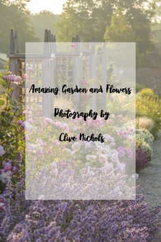 Clive Nichols, shares amazing garden and flowers photography and some photography tips with our blog