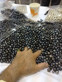 mm Tahitian pearl lot bought at September Hong Kong show, 2013 Pearl Ring, Pearl Jewelry, Jewelery, Loose Pearls, Tahitian Black Pearls, Pearl Design, South Sea Pearls, Beaded Ornaments, Rocks And Minerals