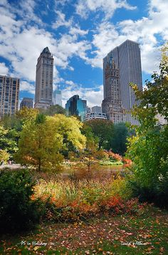 #New York City Manhattan Central Park  -  Easily find the best price and availabilty from http://vacationtravelogue.com We guarantee it.  -  http://wp.me/p291tj-7d