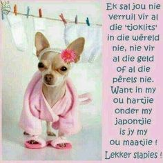 Good Night Greetings, Morning Greetings Quotes, Good Morning Good Night, Good Night Quotes, Beautiful Quotes Inspirational, Inspiring Quotes, Afrikaanse Quotes, Goeie Nag, Good Night Sweet Dreams