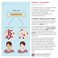Ematologia in pillole #8  Le anemie - le cause (1) Fondazione GIMEMA Onlus