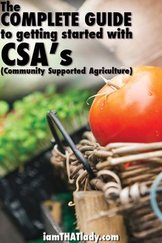 Local and organic food does not have to be expensive! Check out the Complete Guide to getting started with CSA's!