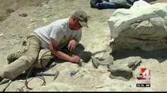 Dinosaur Dig: Ancient creatures are unearthed on BLM land in Utah - Good4Utah.com