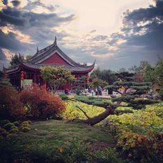#jardinbotanique #livemontreal #montreal | Use Instagram online! Websta is the Best Instagram Web Viewer!