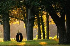 Tire Swing by Elliotphotos, via Flickr