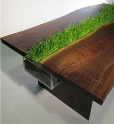 This dining table has a built-in centerpiece of living, growing wheatgrass. We'd plant it with a variety of culinary herbs!