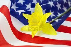 El narciso: símbolo de la primavera y la renovación, de amor y respeto.