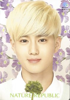 Suho Exo Chen, Baekhyun Chanyeol, Exo K, K Pop Boy Band, Boy Bands, Exo Nature Republic, Exo 2014, Kim Joon, Kim Junmyeon