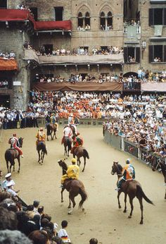 The Palio: Siena and Its Crazy Horse Race by Rick Steves