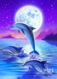 Day Of The Dolphin Art Print by Robin Koni. All prints are professionally printed, packaged, and shipped within 3 - 4 business days. Choose from multiple sizes and hundreds of frame and mat options. Dolphin Painting, Dolphin Art, Dolphin Drawing, Dolphins Tattoo, Water Animals, Cute Animal Drawings, Nature Wallpaper, Marine Life, Sea Creatures