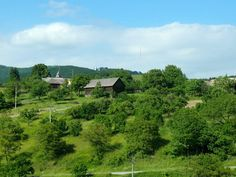 Vineyard, Mountains, Nature, Outdoor, Outdoors, Naturaleza, Vine Yard, Vineyard Vines, Outdoor Games