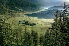 """""""Günün Karesi Antalya'dan  Batı Toroslar'ın yükseklerine gizli Çığlıkara Tabiatı Koruma Alanı, bitki ve hayvan çeşitliliğiyle dikkat çeken özel bir yer.…"""""""