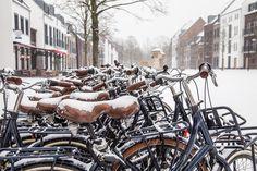 Stadsfietsen, e-bikes en kinderfietsen van hoge kwaliteit kun je huren bij Fietsverhuur Dousberg. Bij de fietsverhuur en de receptie zijn diverse fietsroutes en -kaarten verkrijgbaar om Maastricht en de prachtige omgeving te ontdekken. Wil je alvast een fiets reserveren? Dat kan via de website van Fietsverhuur Dousberg. Resorts, Om, Website, Vacation Resorts, Beach Resorts, Vacation Places