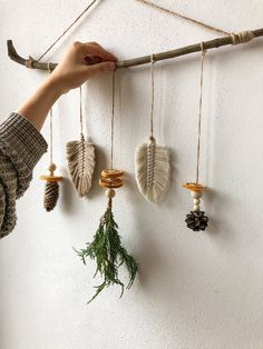 Twig Crafts, Cabin Crafts, Nature Crafts, Nature Decor, Branch Decor, Wall Decor, Christmas Crafts, Christmas Decorations, Dried Lemon