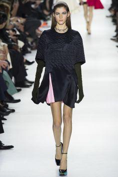 Défilé Christian Dior prêt-à-porter automne-hiver 2014-2015|8