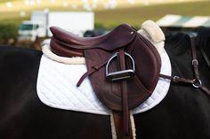 gorgeous close contact saddle