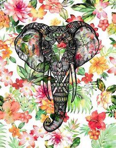 Baby Elephant Wallpaper wallpaper.