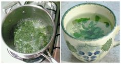 Remedies For Water Retention Parsley is commonly used to improve the taste of our dishes, but this health-boosting herb provides more than that. For one thing, it's a powerful diuretic that effectively treats urinary tract inf… Parsley Tea, Healthy Drinks, Healthy Eating, Healthy Food, Healthy Life, Water Retention Remedies, Diet Recipes, Healthy Recipes, Weight Loss Herbs