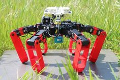 A new robot has been developed that orients itself in its environment like desert ants do, and do not rely on GPS - technology short science news Types Of Ants, Autonomous Robots, Build A Robot, Robot Technology, Technology News, Look At The Sky, Robot Design, Mechanical Engineering, Light Sensor